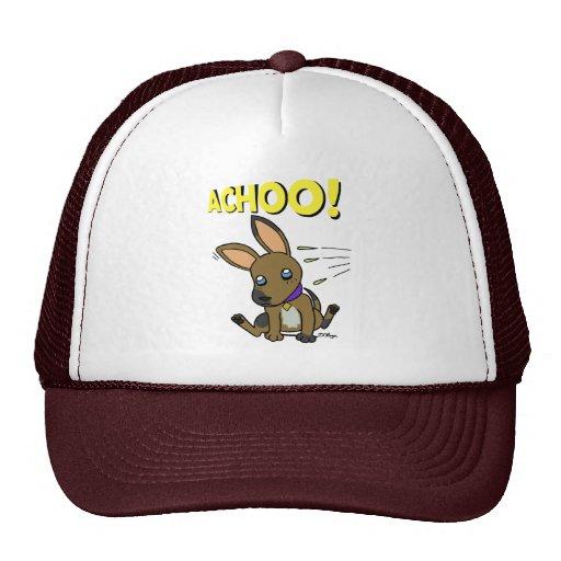 Big eared doggy hats
