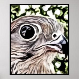 Big eyed bird painting poster