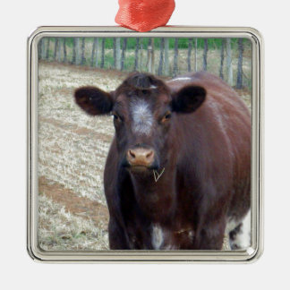 Big_Fat_Brown_Cow,_ Christmas Ornament