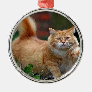 Big Fat Orange Cat Christmas Ornament