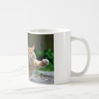 Big Fat Orange Cat Coffee Mugs