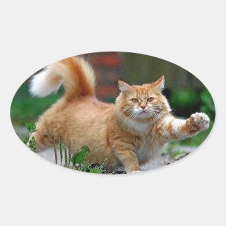 Big Fat Orange Cat Oval Sticker