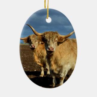Big_Fawn_Highland_Cows,_ Ceramic Oval Decoration