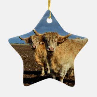 Big_Fawn_Highland_Cows,_ Ceramic Star Decoration