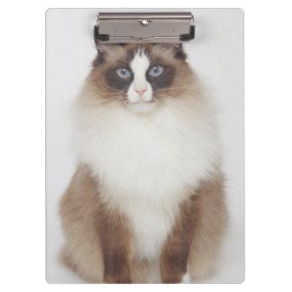 Big Furry Cat Clipboard
