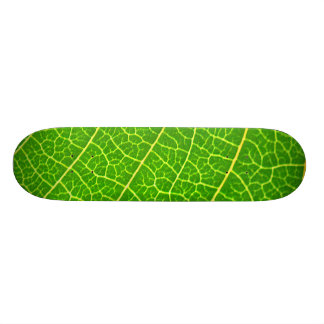 Big Green leaf Skate Deck