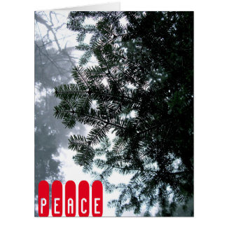 Big Greeting Card - PEACE