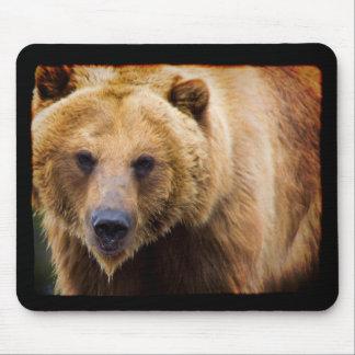 Big Grizzly Bear Black Border Mouse Mat
