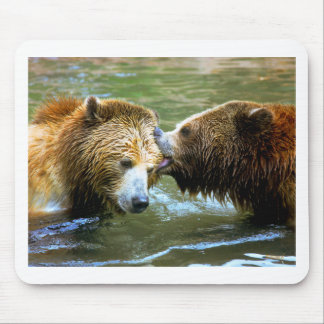 Big Grizzly Bear Kiss Mouse Pads