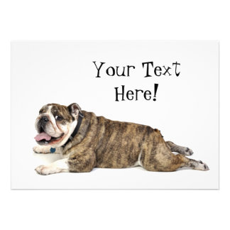 Big Happy Bulldog Personalized Announcements
