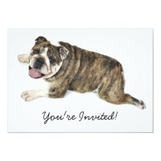 "Big Happy Bulldog 5"" X 7"" Invitation Card"