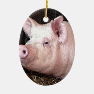 Big happy pink pig ceramic oval decoration
