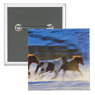 Big Horn Mountains, Horses Running in the Snow 15 Cm Square Badge