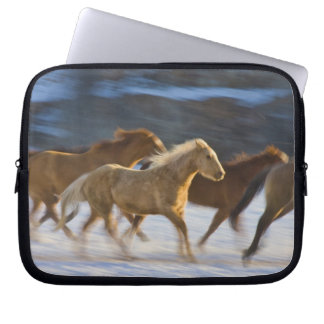 Big Horn Mountains, Horses running in the snow 2 Computer Sleeve