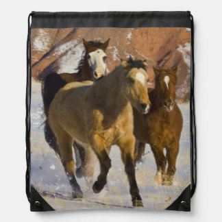 Big Horn Mountains, Horses running in the snow 3 Drawstring Bag