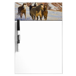 Big Horn Mountains, Horses running in the snow 3 Dry Erase Board