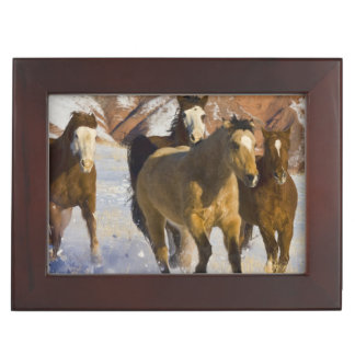 Big Horn Mountains, Horses running in the snow 3 Keepsake Box