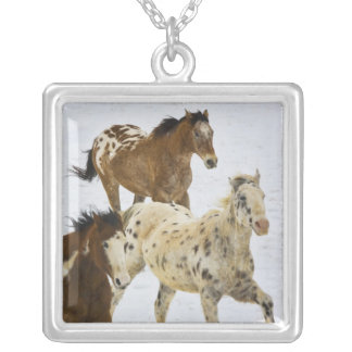 Big Horn Mountains, Horses running in the snow 4 Silver Plated Necklace