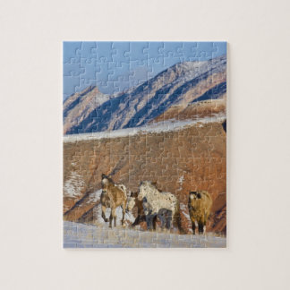 Big Horn Mountains, Horses running in the snow Jigsaw Puzzle