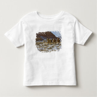 Big Horn Mountains, Horses Running in The Snow Toddler T-Shirt
