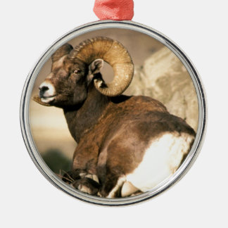 Big Horn Ram, Part of the American Mammal Series Silver-Colored Round Decoration