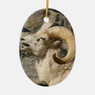 Big Horn Sheep Laughing Ornament