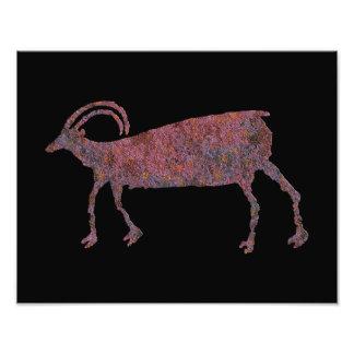 Big Horn Sheep Petroglyph Art Photo