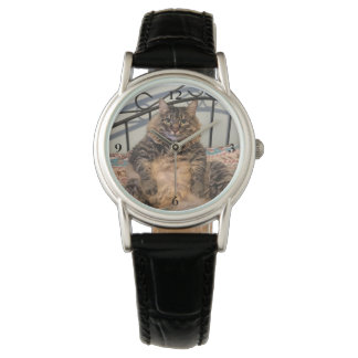 Big Huggable Cat Watch
