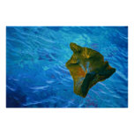 Big Island and Blue Waters Poster Print