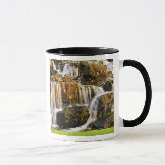 Big Island, Hawaii. Cascading stream, Big Island Mug