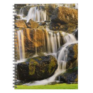 Big Island, Hawaii. Cascading stream, Big Island Notebook