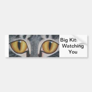 Big Kitty Car Bumper Sticker