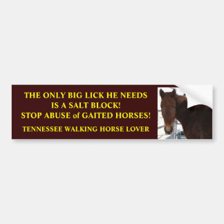 Big Lick - Tennessee Walking Horses Bumper Sticker