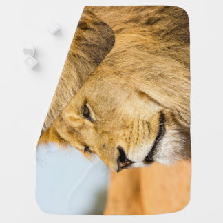 Big lion looking far away baby blanket