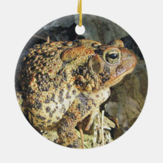 Big Momma Toad Christmas Ornament