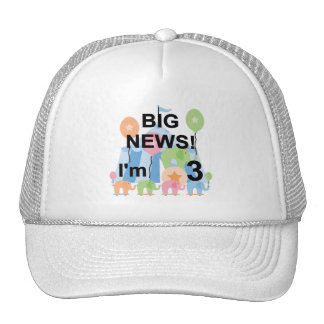 Big News Circus 3rd Birthday Tshirts and Gifts Mesh Hats
