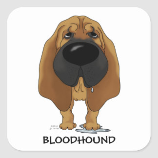 Big Nose Bloodhound Square Sticker