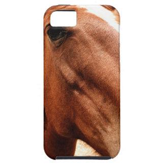 Big Nose iPhone 5 Cases