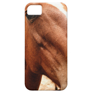 Big Nose iPhone 5 Covers
