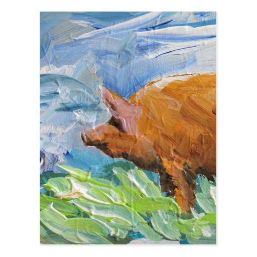 Big Pig gift Post Card