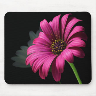 big pink flower mouse mouse mats