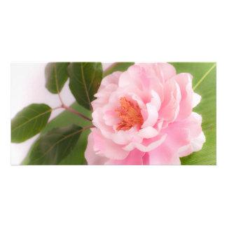 big pink flower photo greeting card