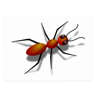 Big Red Ant Postcard
