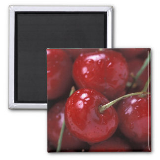 Big Red Cherries Magnet