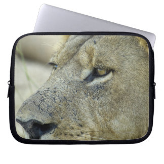 Big Red is a magnificent male Lion Laptop Sleeve