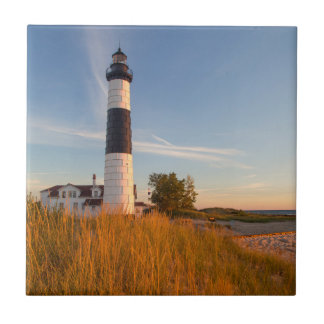 Big Sable Point Lighthouse On Lake Michigan 3 Small Square Tile