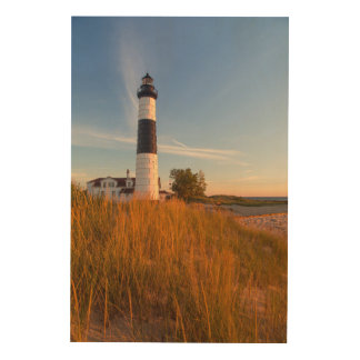 Big Sable Point Lighthouse On Lake Michigan 3 Wood Print