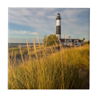 Big Sable Point Lighthouse On Lake Michigan Small Square Tile