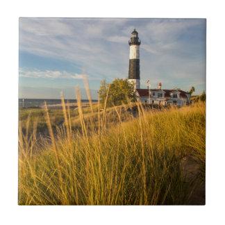 Big Sable Point Lighthouse On Lake Michigan Tile