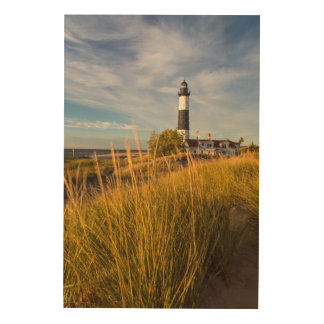 Big Sable Point Lighthouse On Lake Michigan Wood Print